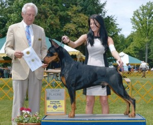 U Litter – Gatehouse Dobermans